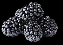 icon-blackberries